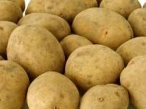 patate, ricette intolleranze