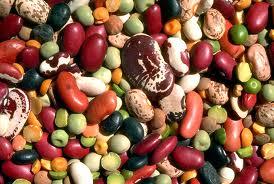 legumi misti, ricette per intolleranti alimentari